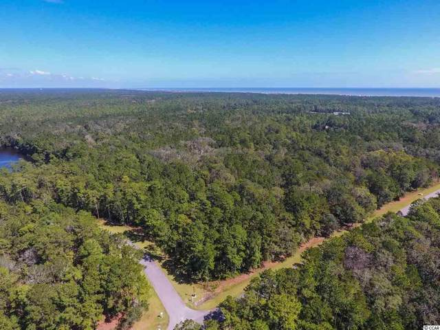 689 Ocean Lakes Loop, Pawleys Island, SC 29585 (MLS #2017211) :: Garden City Realty, Inc.