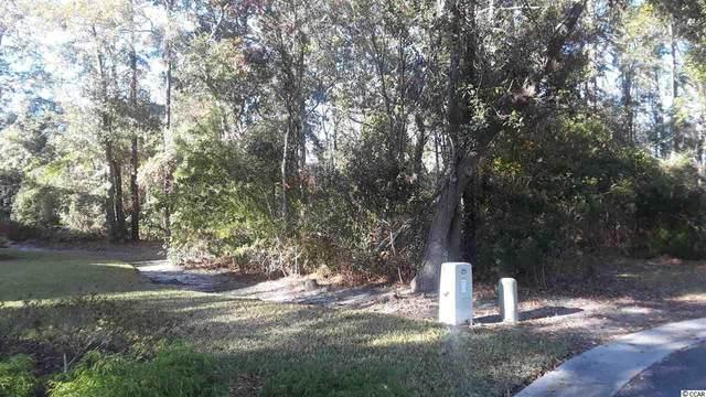 6 Hunters Green Ln., Pawleys Island, SC 29585 (MLS #2017616) :: James W. Smith Real Estate Co.