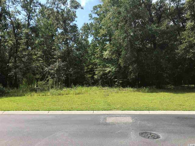 Lot 49 Gray Heron Dr., North Myrtle Beach, SC 29582 (MLS #2017708) :: Duncan Group Properties