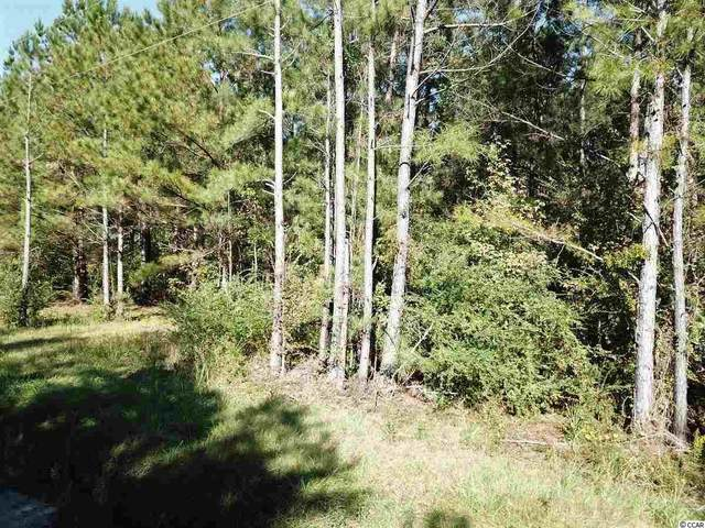 Lot E Dossies Rd., Conway, SC 29526 (MLS #2017759) :: The Litchfield Company