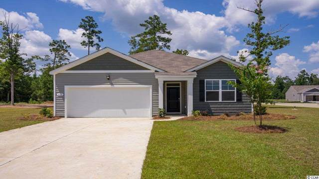 1005 Hawks Nest Ln., Conway, SC 29526 (MLS #2017836) :: The Greg Sisson Team with RE/MAX First Choice