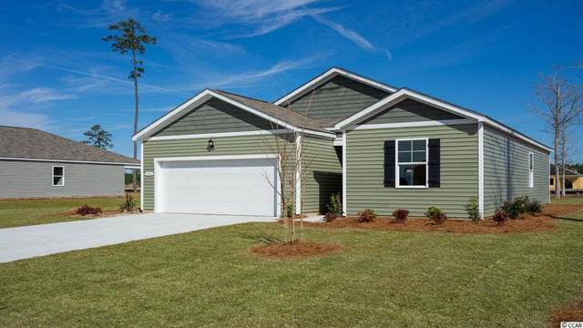 1001 Hawks Nest Ln., Conway, SC 29526 (MLS #2017838) :: Right Find Homes