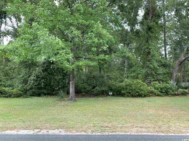 Lot 31 Wallace Pate Dr., Georgetown, SC 29440 (MLS #2017932) :: The Trembley Group | Keller Williams