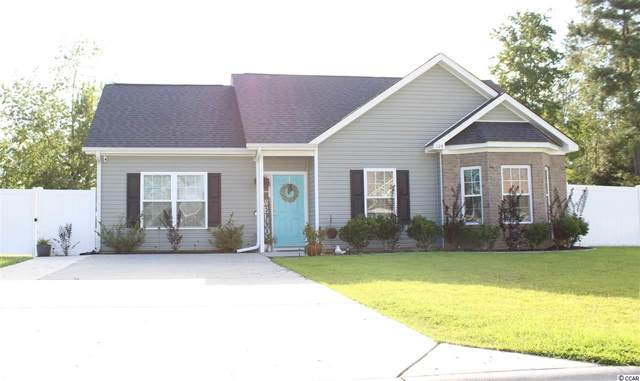 124 Maggie Way, Myrtle Beach, SC 29588 (MLS #2018325) :: Jerry Pinkas Real Estate Experts, Inc