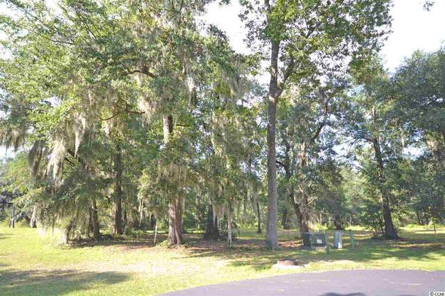 298 Susannah Ln., Pawleys Island, SC 29585 (MLS #2018594) :: The Hoffman Group