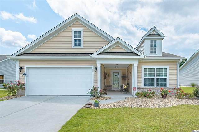 524 Mattamushkeet Dr., Little River, SC 29566 (MLS #2018641) :: Welcome Home Realty