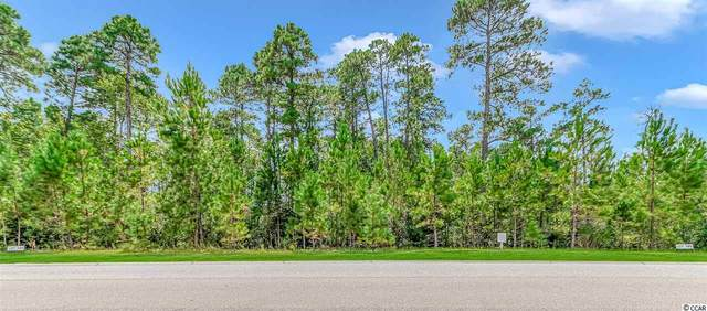 122 Sago Palm Dr., Myrtle Beach, SC 29579 (MLS #2018753) :: Jerry Pinkas Real Estate Experts, Inc