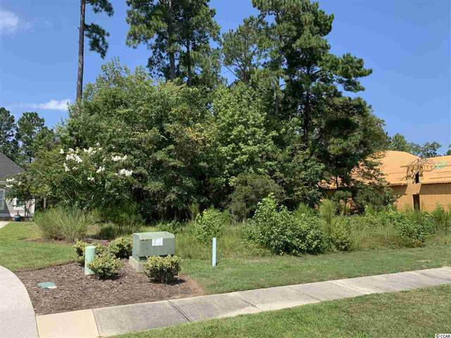 428 Chamberlin Rd., Myrtle Beach, SC 29588 (MLS #2018819) :: The Lachicotte Company