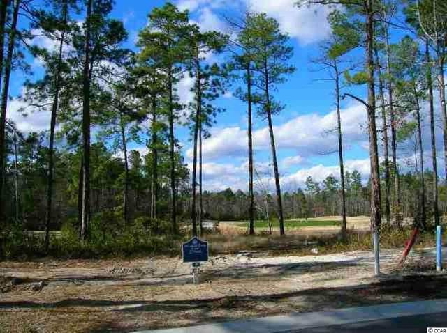 2016 Spring Valley Ct., Loris, SC 29569 (MLS #2019010) :: The Greg Sisson Team with RE/MAX First Choice