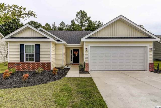 216 Hamilton Way, Conway, SC 29526 (MLS #2019099) :: Garden City Realty, Inc.