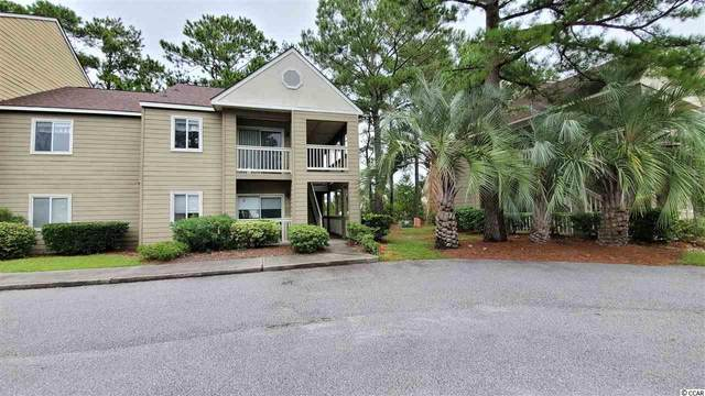 100-D Myrtle Greens Dr. D, Conway, SC 29526 (MLS #2019480) :: Hawkeye Realty