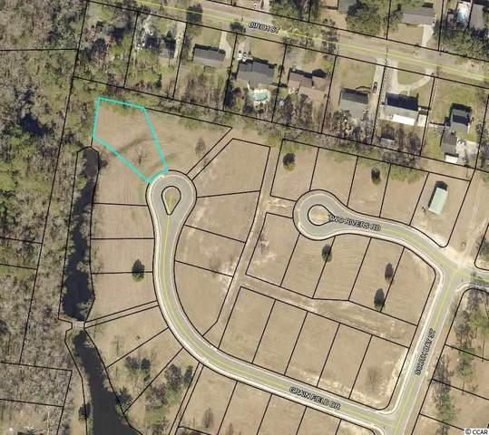 TBD Grain Field Dr., Georgetown, SC 29440 (MLS #2019568) :: Hawkeye Realty