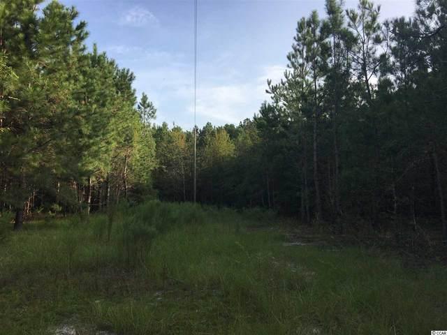 Whispering Hill Rd., Loris, SC 29569 (MLS #2019624) :: Duncan Group Properties