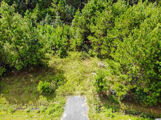 Lot 65 Tidway Circle, Conway, SC 29527 (MLS #2019752) :: Armand R Roux | Real Estate Buy The Coast LLC