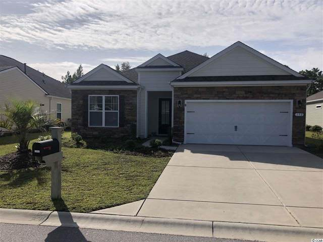 172 Viareggio Rd., Myrtle Beach, SC 29579 (MLS #2020059) :: Jerry Pinkas Real Estate Experts, Inc