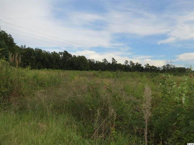 Tract 3 Tupperware Rd., Hemingway, SC 29554 (MLS #2020088) :: The Lachicotte Company