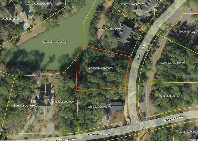 Lot 102 Woodstork Ln., Georgetown, SC 29440 (MLS #2020122) :: The Hoffman Group