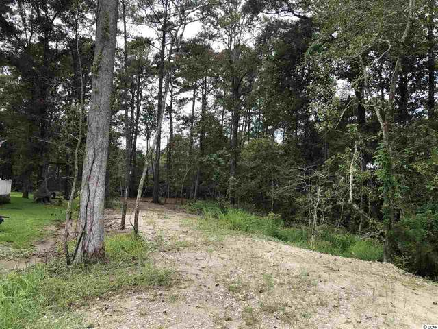175 Silver Hill Ln., Pawleys Island, SC 29585 (MLS #2020145) :: Jerry Pinkas Real Estate Experts, Inc