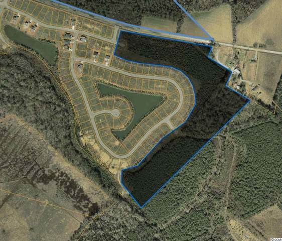 65 lots Blue Rock Dr., Longs, SC 29568 (MLS #2020406) :: The Greg Sisson Team