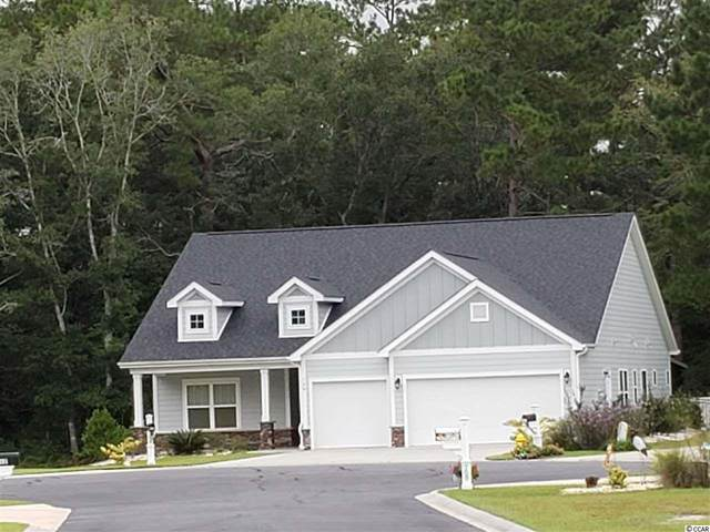 100 Swallowtail Ct., Little River, SC 29566 (MLS #2020414) :: Coldwell Banker Sea Coast Advantage