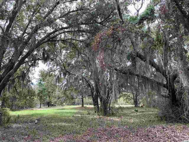 Lot 20 Sea Island Dr., Georgetown, SC 29440 (MLS #2020520) :: The Hoffman Group