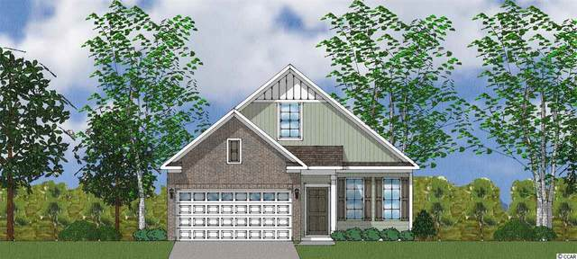 1202 Pyxie Moss Dr., Little River, SC 29566 (MLS #2020588) :: Right Find Homes