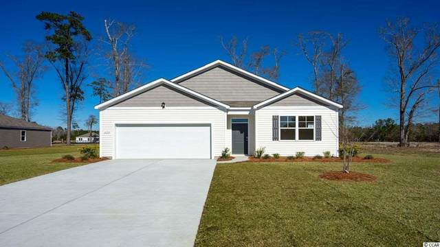 1024 Hawks Nest Ln., Conway, SC 29526 (MLS #2020687) :: Welcome Home Realty