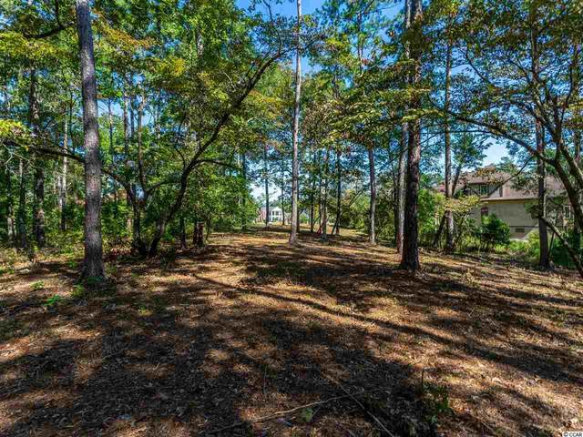 1012 Fishermans Ct., Murrells Inlet, SC 29576 (MLS #2020845) :: The Lachicotte Company