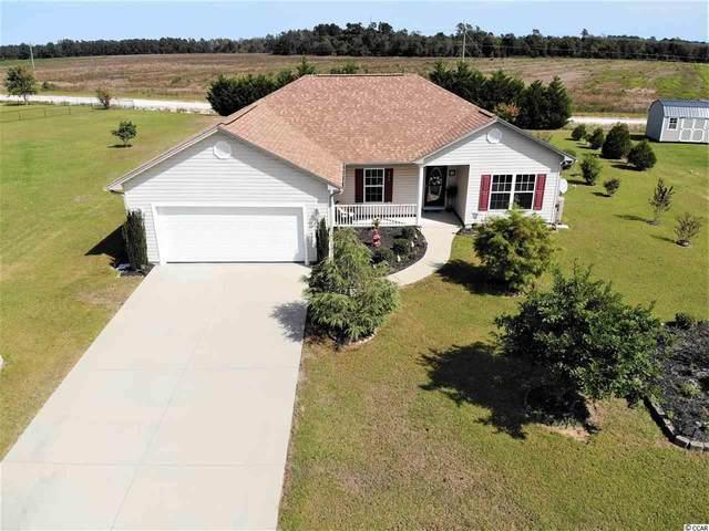 220 Sweetbay Magnolia St., Loris, SC 29569 (MLS #2021463) :: Grand Strand Homes & Land Realty