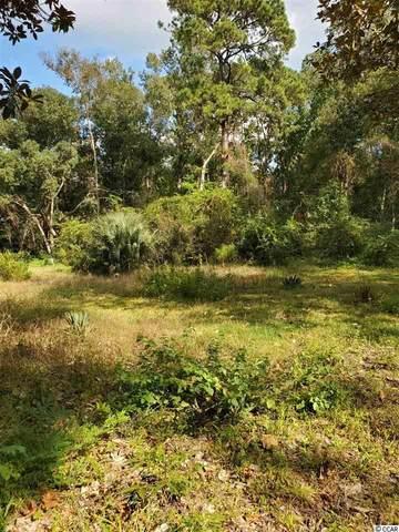 141 Carr Rd., Pawleys Island, SC 29585 (MLS #2021845) :: Hawkeye Realty