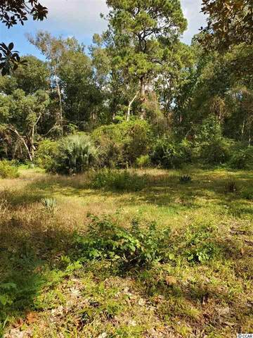 141 Carr Rd., Pawleys Island, SC 29585 (MLS #2021845) :: Grand Strand Homes & Land Realty