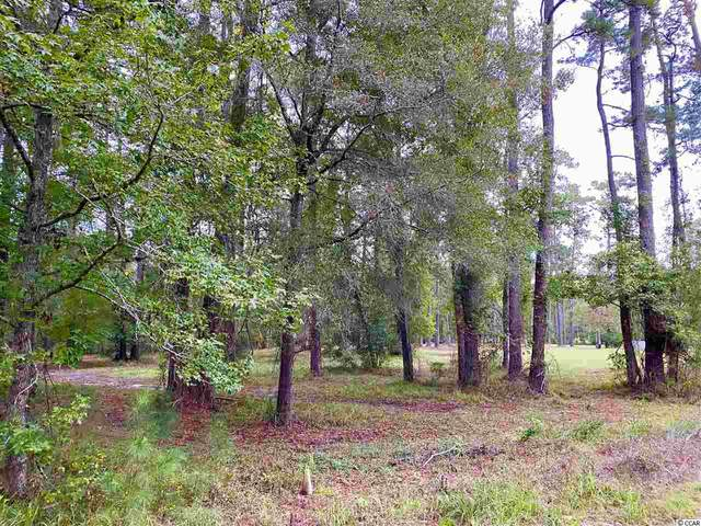 TBD Long Avenue Ext., Conway, SC 29526 (MLS #2021978) :: Right Find Homes