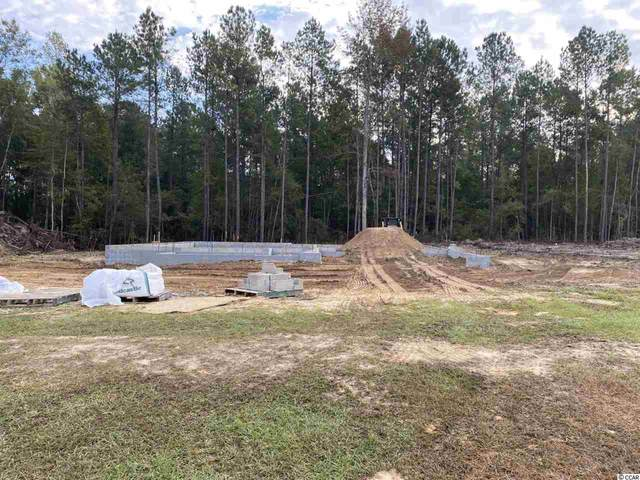 300 Purdue Ct., Galivants Ferry, SC 29544 (MLS #2022054) :: Welcome Home Realty