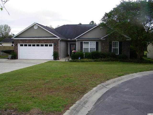 227 Mint Ct., Little River, SC 29566 (MLS #2022153) :: Armand R Roux | Real Estate Buy The Coast LLC