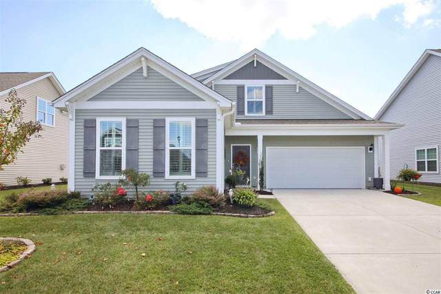 613 Ginger Lily Way, Little River, SC 29566 (MLS #2022193) :: The Hoffman Group
