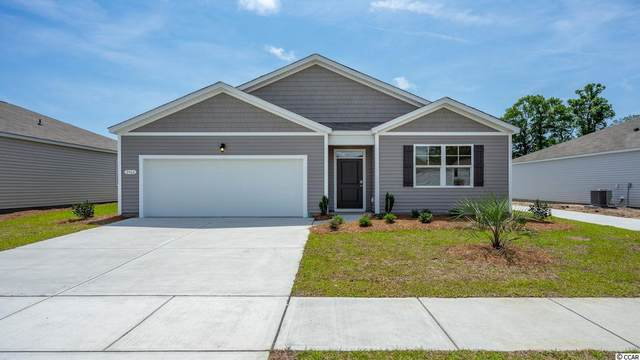 669 Black Pearl Way, Myrtle Beach, SC 29588 (MLS #2022365) :: Hawkeye Realty