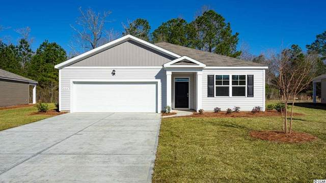 10023 Hamilton Branch Loop, Myrtle Beach, SC 29579 (MLS #2022495) :: The Lachicotte Company