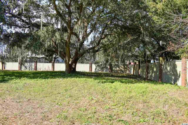 151 Berry Tree Ln., Pawleys Island, SC 29585 (MLS #2022629) :: The Lachicotte Company