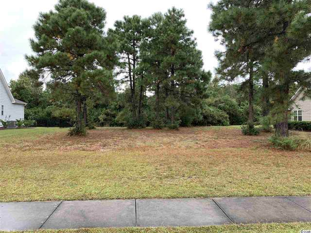 257 Deep Blue Dr., Myrtle Beach, SC 29579 (MLS #2022865) :: Right Find Homes