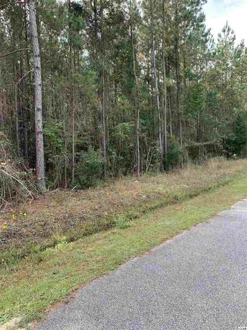 TBD 4.09 AC John Doctor Rd., Conway, SC 29526 (MLS #2022931) :: Sloan Realty Group