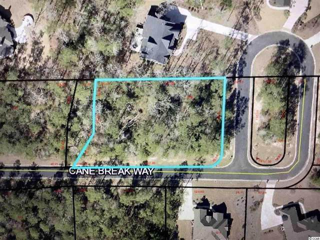 19 Cane Break Way, Murrells Inlet, SC 29576 (MLS #2022980) :: The Hoffman Group