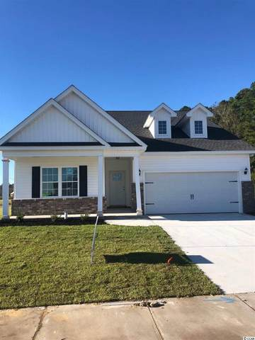 507 Charlton Blvd., Georgetown, SC 29440 (MLS #2023064) :: Duncan Group Properties