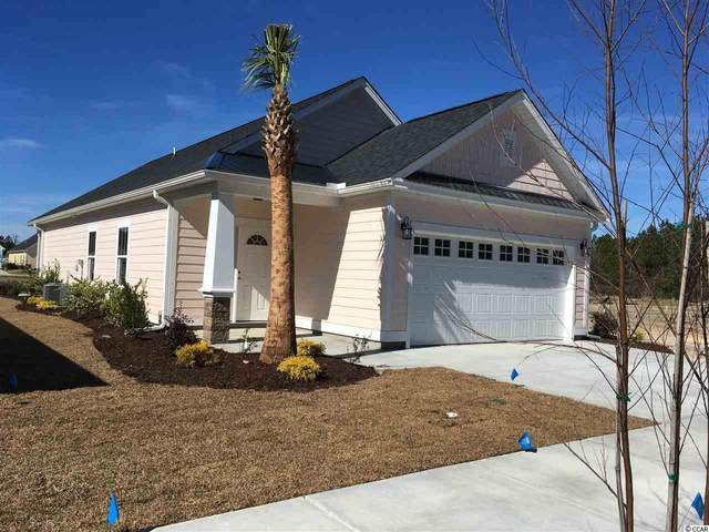 1628 Carsens Ferry Dr., Conway, SC 29526 (MLS #2023128) :: Right Find Homes