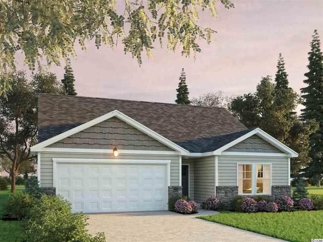 54 Grove Park Loop, Murrells Inlet, SC 29576 (MLS #2023286) :: Duncan Group Properties
