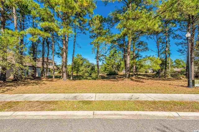 1221 Wood Stork Dr., Conway, SC 29526 (MLS #2023368) :: Armand R Roux | Real Estate Buy The Coast LLC
