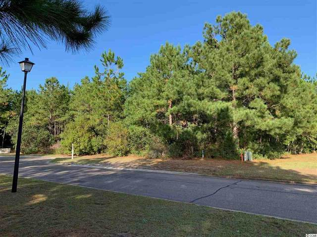 Stump Blind Trail, Myrtle Beach, SC 29588 (MLS #2023410) :: The Greg Sisson Team