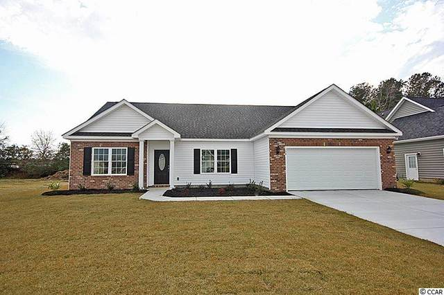 311 Palm Terrace Loop, Conway, SC 29526 (MLS #2023838) :: Duncan Group Properties