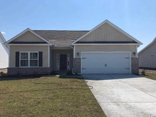 339 Palm Terrace Loop, Conway, SC 29526 (MLS #2024101) :: Welcome Home Realty