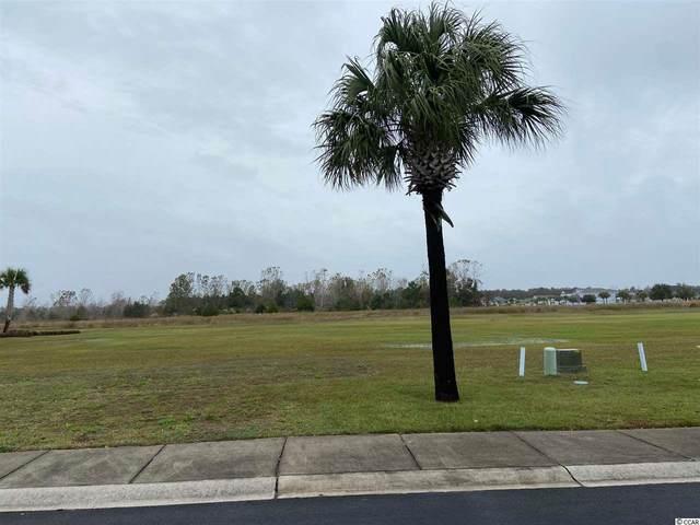 163 West Palms Dr., Myrtle Beach, SC 29579 (MLS #2024139) :: Armand R Roux | Real Estate Buy The Coast LLC