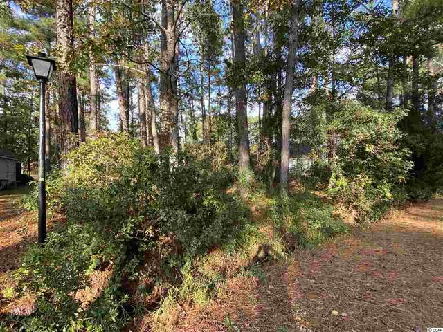 57 John Waites Ct., Georgetown, SC 29440 (MLS #2024245) :: Coastal Tides Realty